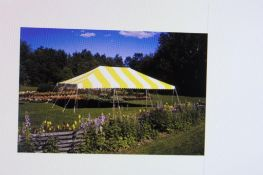 Eureka 20 ft. x 30 ft. Pole Tent, Yellow/White