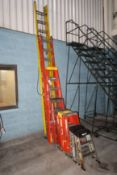 (9) Assorted Ladders