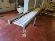 Roller Type Conveyor, 14'' x 120''