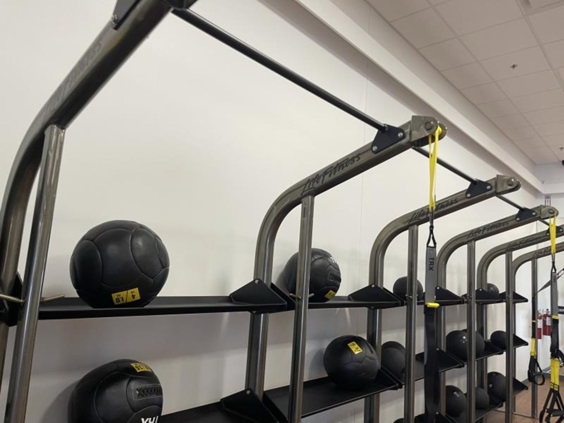 Life Fitness SYNRGY Wall Rack Training System, TRX Training System Straps, Rope, Balls - Image 3 of 8