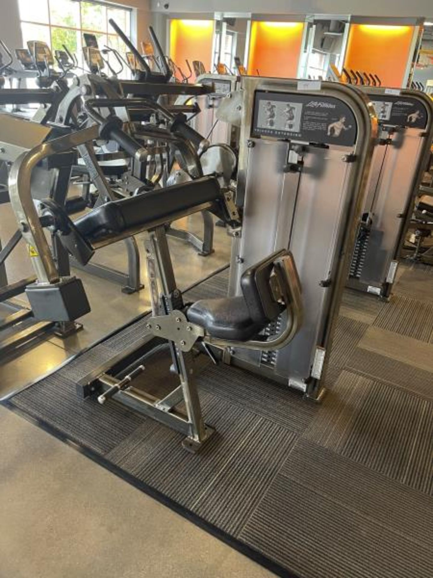 Life Fitness Biceps Curl Extension M: PSTESE