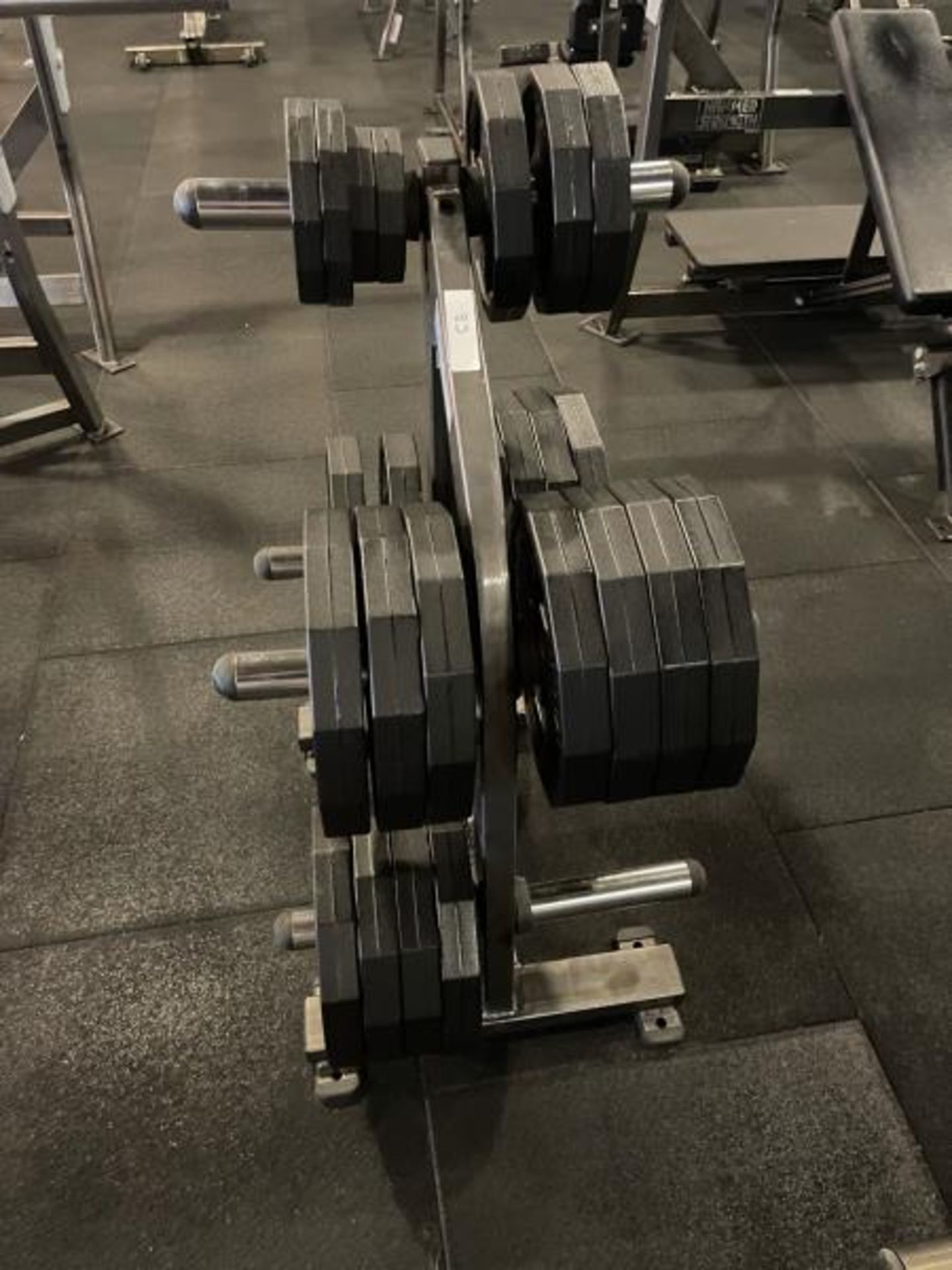 Hammer Strength Weighted Tree with Iron Grip Weight Plates - Image 3 of 3