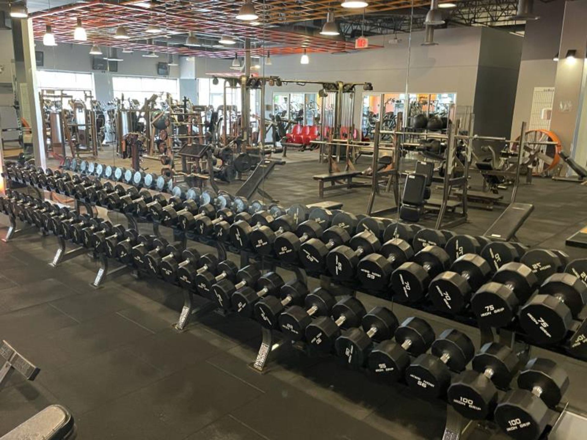 Iron Grip Dumbbell 5-100# with Hammer Strength 2 Tier Racks - Image 9 of 9