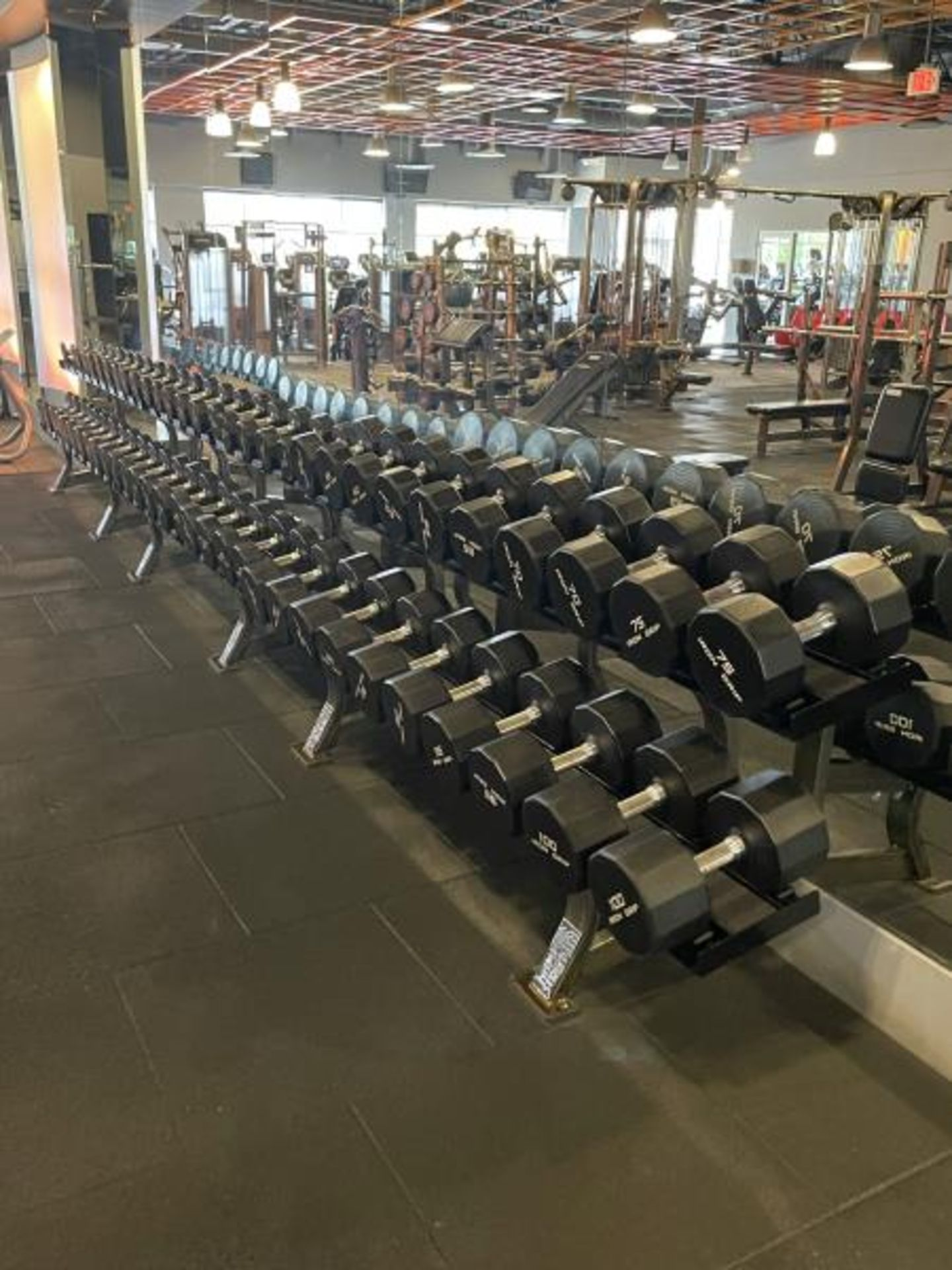 Iron Grip Dumbbell 5-100# with Hammer Strength 2 Tier Racks - Image 8 of 9