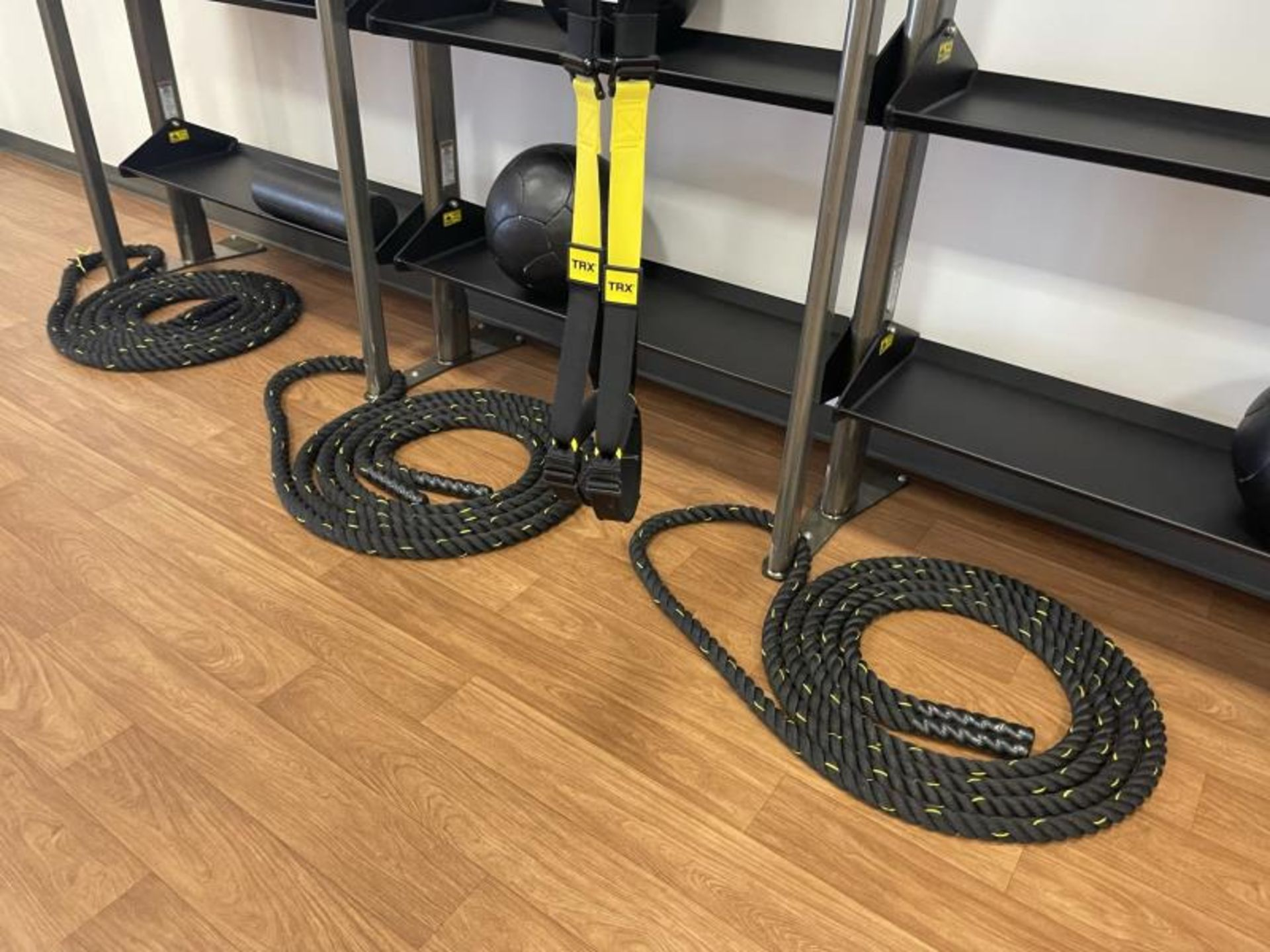 Life Fitness SYNRGY Wall Rack Training System, TRX Training System Straps, Rope, Balls - Image 5 of 8