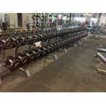 Iron Grip Dumbbell 5-100# with Hammer Strength 2 Tier Racks