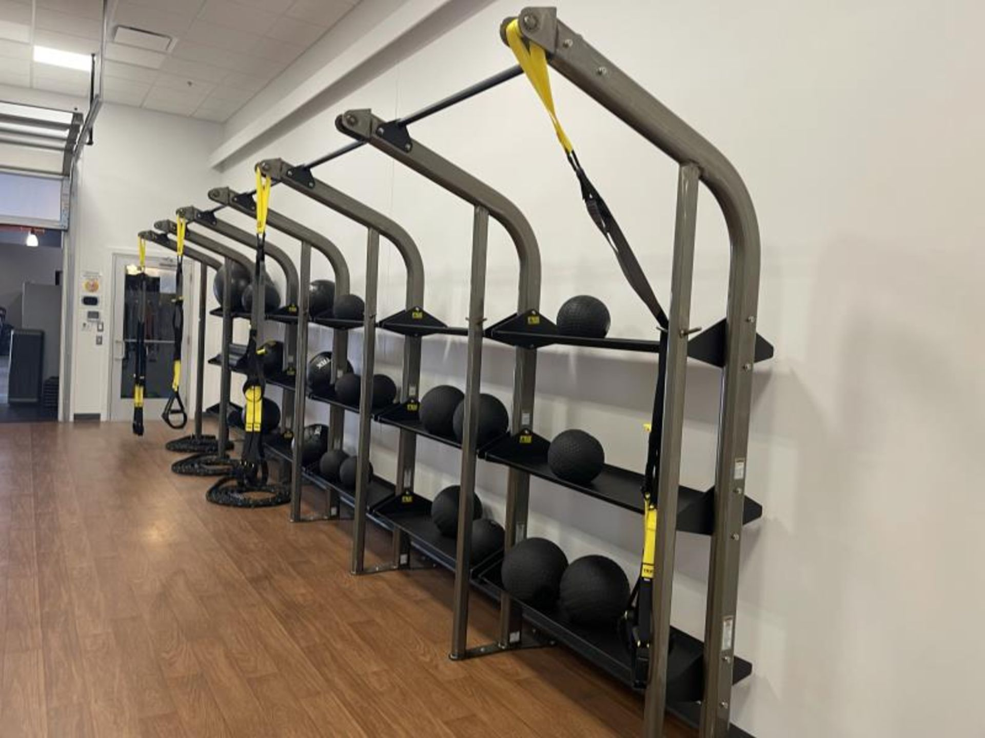 Life Fitness SYNRGY Wall Rack Training System, TRX Training System Straps, Rope, Balls - Image 6 of 8
