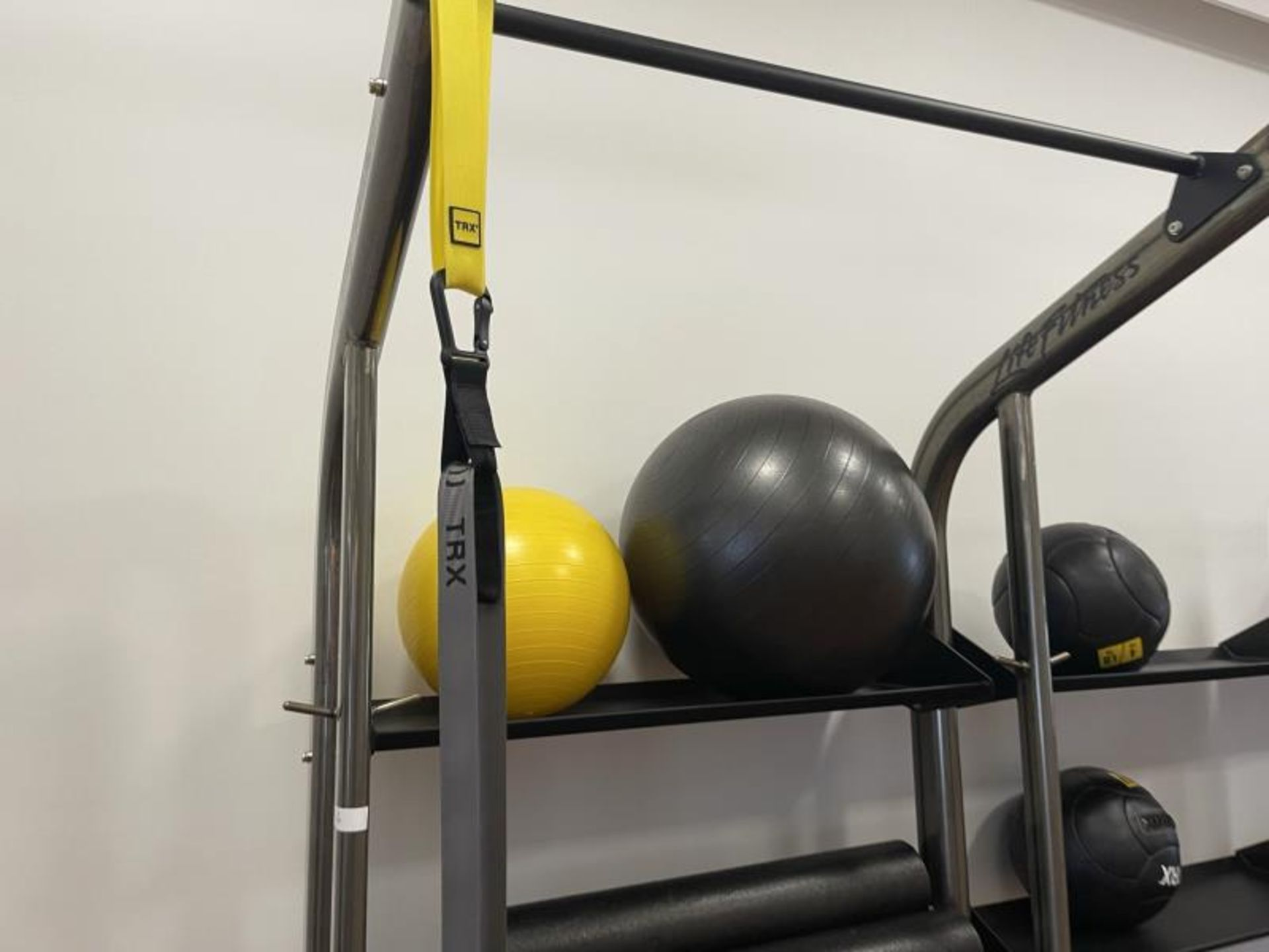 Life Fitness SYNRGY Wall Rack Training System, TRX Training System Straps, Rope, Balls - Image 2 of 8