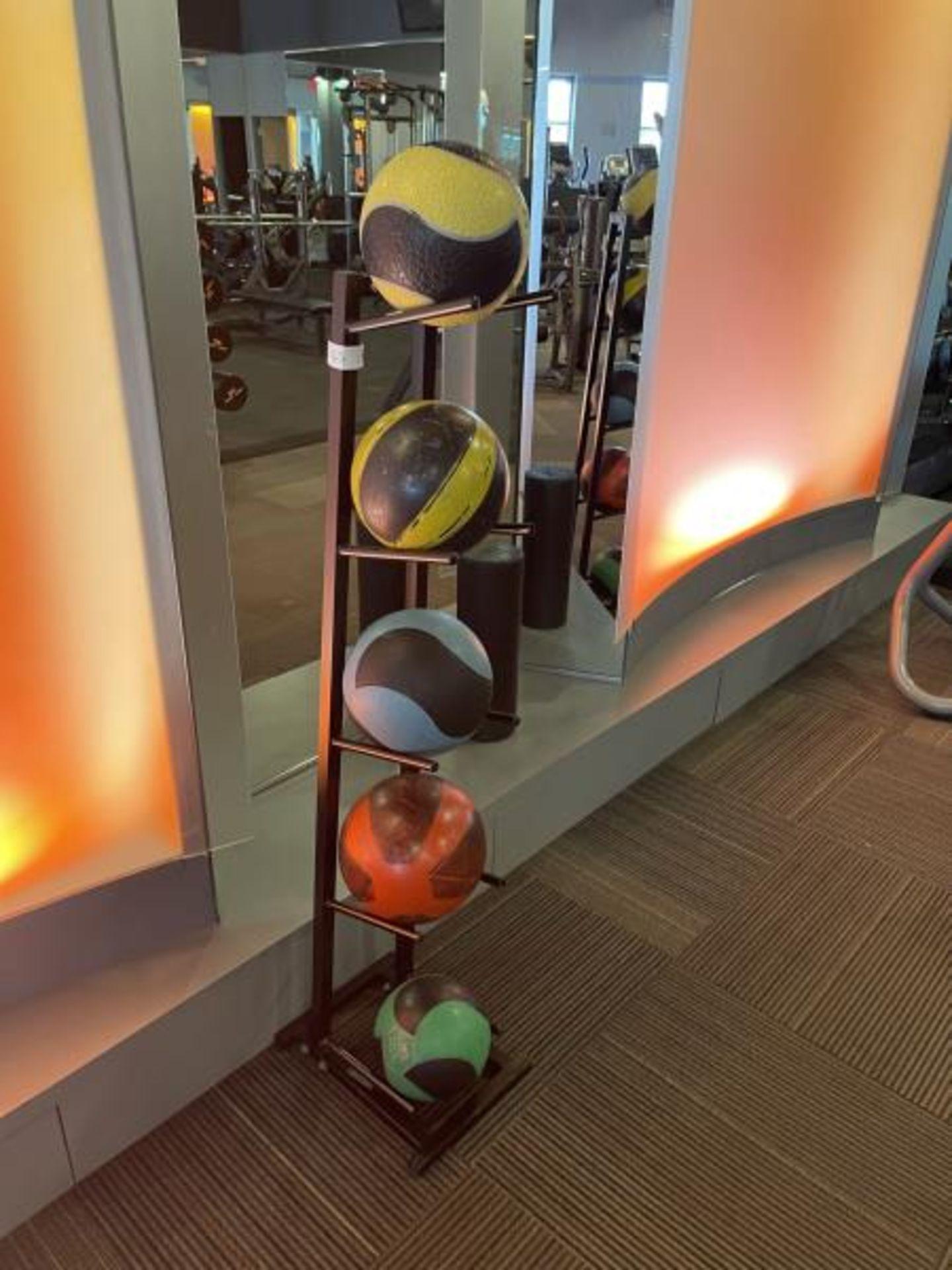 Medicine Training Balls with 5 Tier Metal Rack