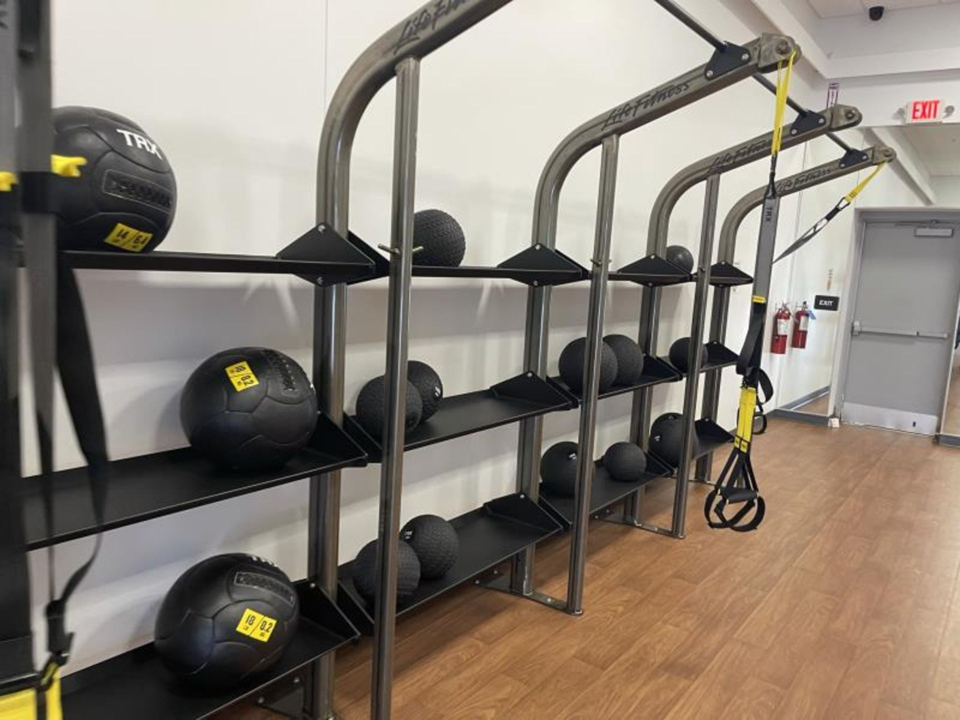 Life Fitness SYNRGY Wall Rack Training System, TRX Training System Straps, Rope, Balls - Image 4 of 8