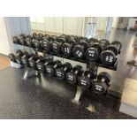 Hammer Strength Dumbbells 20-65#