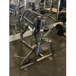 Hammer Strength Seated Bicep