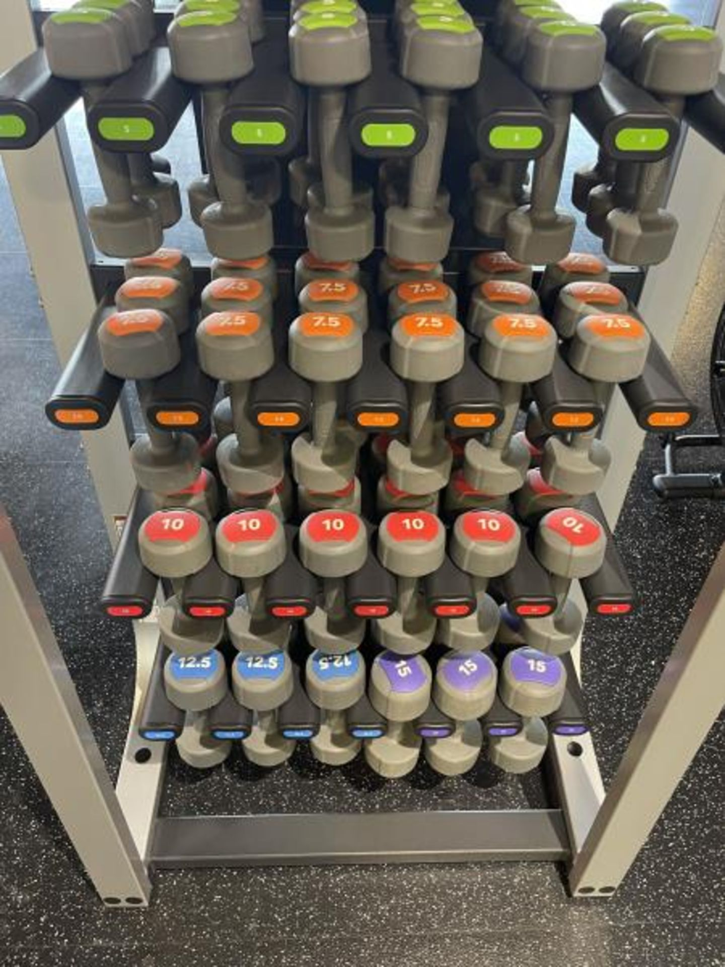 Life Fitness Dumbbell Rack, Coated, Lift Fitness Dumbbells 2.5, 5, 7.5, 10, 12.5, 15 LBS - Image 3 of 4