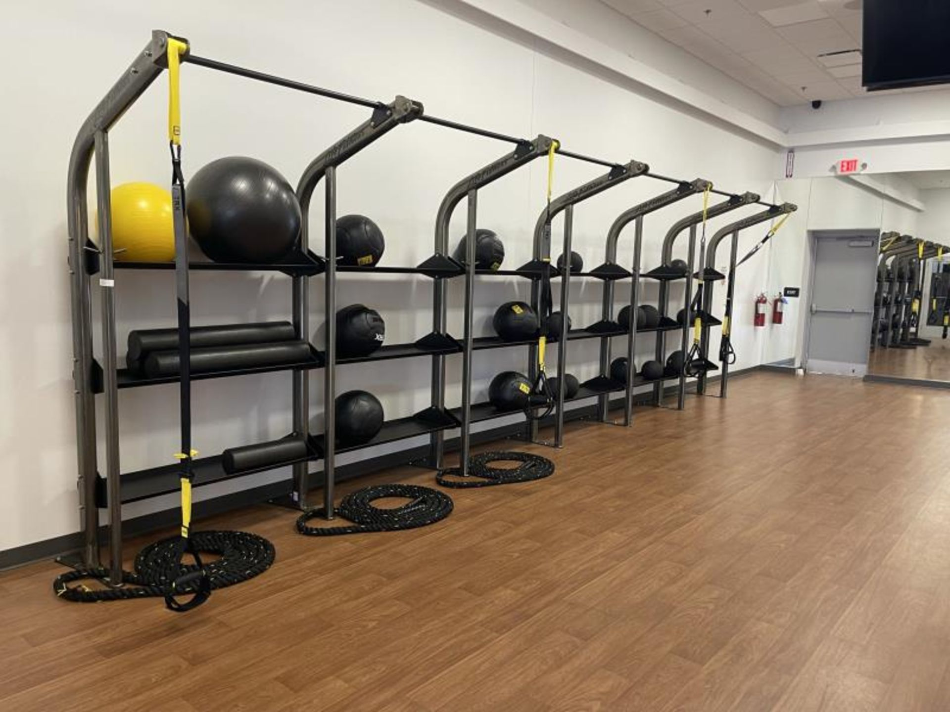 Life Fitness SYNRGY Wall Rack Training System, TRX Training System Straps, Rope, Balls