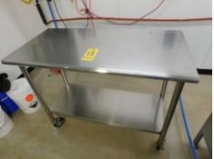 Stainless Steel Table on Casters, with Bottom Shelf, 4' L x 2' W x 3' T