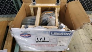 Leeson Motor