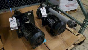 Knoll Pumps