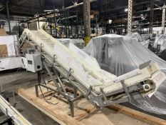 """Ohlson 10-ft long Stainless Steel Inclined Conveyor with 98"""" discharge height - 18"""" wide cleated"""