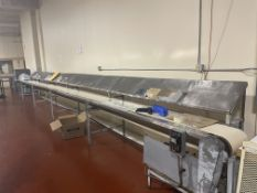 """12"""" wide x 36-ft long x 36"""" tall packing conveyor"""