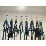 PROTECTION HARNESSES