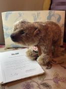 STEIFF YES/NO GRIZZLY BEAR TEDDY MINT & BOXED