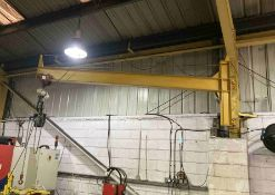Wall mounted jib crane with Lion 500kg capacity electric chain hoist