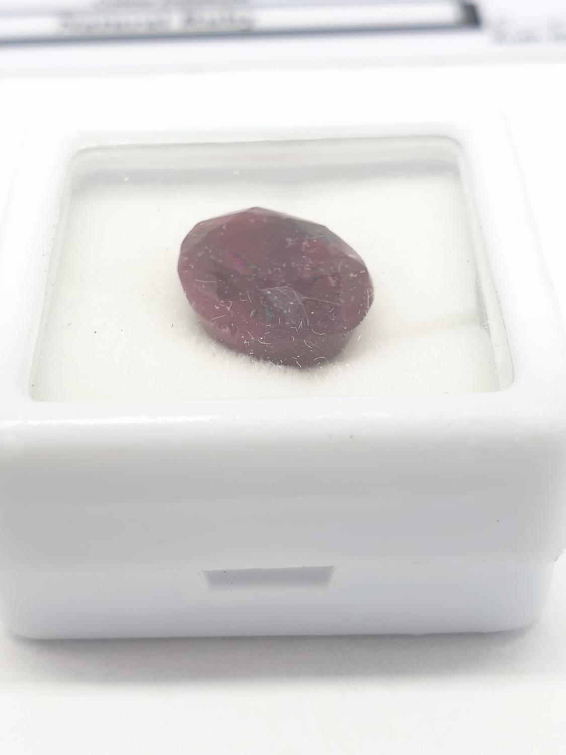 8.20 Cts Natural ruby. Oval mixed cut stone. Good colour. GLI certification included. - Image 3 of 4