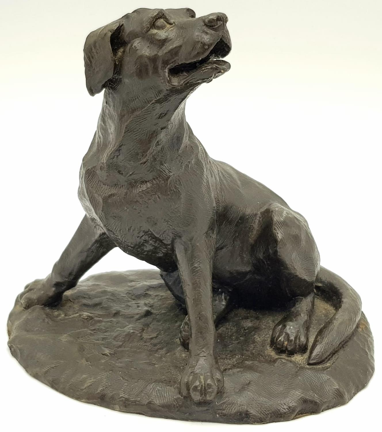 A BRONZE FIGURE OF A SITTING DOG. 767gms 14cms tall.