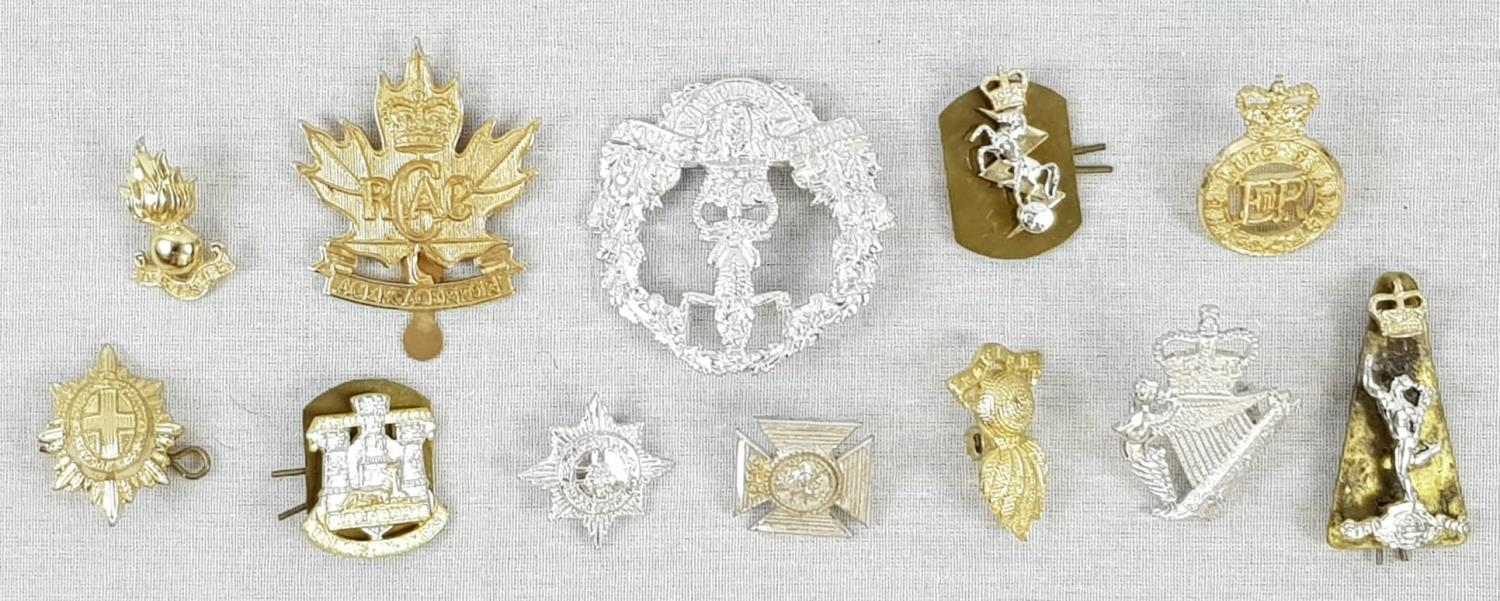 Twelve military cap and collar badges and Indian shield display Plaque - Image 4 of 4