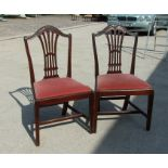 A pair of Georgian mahogany chairs with arched crest rail carved with wheat sheaf's, with drop-in
