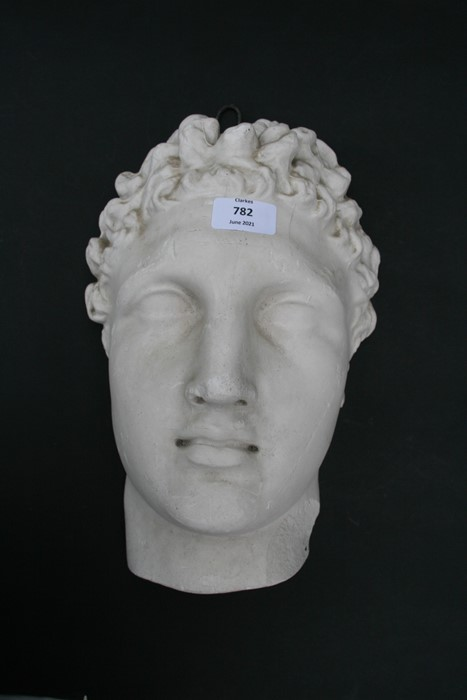 After the antique. A plaster cast mould of Michael Angelo's David, signed 'D Brucciani & Co. London' - Image 3 of 8