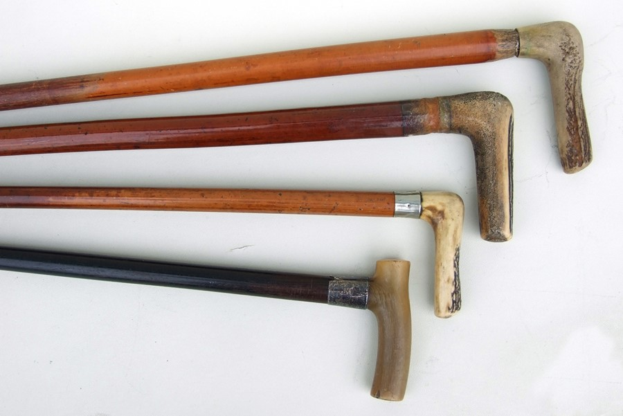 Three antler handled walking sticks; together with a silver mounted horn handled walking stick (4).
