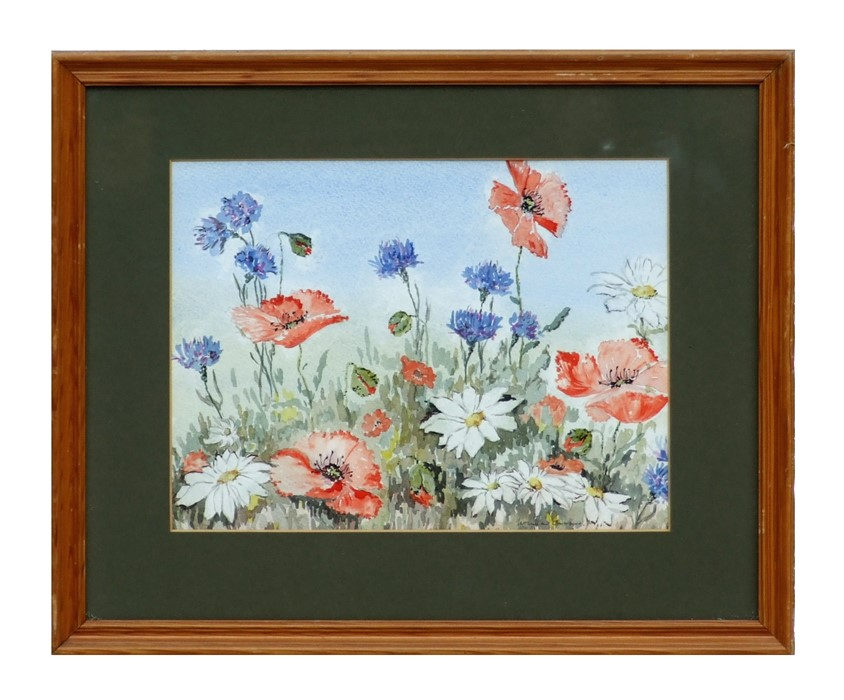 Norma I Cooper (modern British) - A Wild Flower Study of Poppies, Daisies and other Flowers -