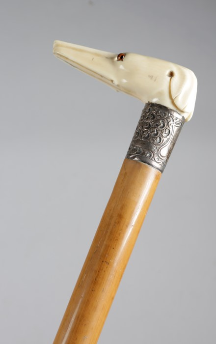 A late Victorian ivory handled walking cane, the handle in the form of a greyhound or whippet's - Image 5 of 6