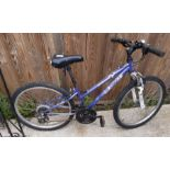 Apollo XC24 girls sprung forks bicycle