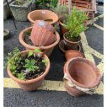 Assorted terracotta garden planters in varying siz