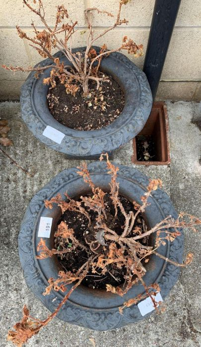 Pair of carved metal garden planters with various