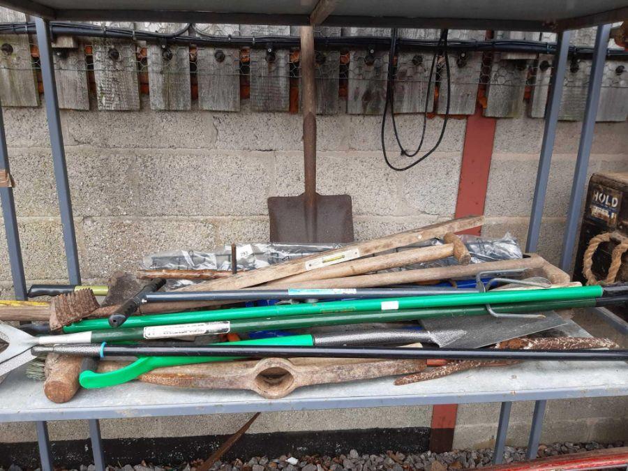Shelf of garden tools etc