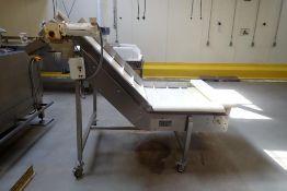 Lutech Co incline cleated plastic belt conveyor