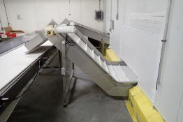 SS incline cleated plastic belt conveyor
