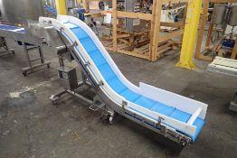 ENR incline z-conveyor