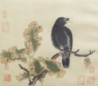 Chinese school, ink and colours on silk, 19th/20th C.: A bird on a branch