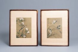 Chinese school, ink and colours on silk, 19th/20th C.: Two works depicting birds between blossoming