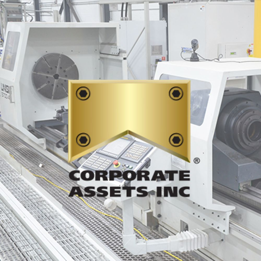 Surplus Assets of Alta Precision Inc.