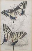 Three 18th century handcoloured mapsof Northamtonpshire, Montgomeryshire and Merionethshire and