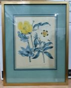 Assorted prints, mirrorsto include print of Peter Rabbit, botanical studies, etc (1 box)