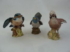 Six Beswick model birdsto include Kingfisher, 2417 Jay, Magpie, Lapwing 2416 and two others (6)