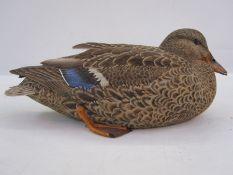 Philip Nelson decoy duck, carvedin the form of female mallard, initials to base 16 cms h x 39 cms