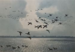 "Peter Scott Five colour prints ""Broadbills Coming Into Raft"", ""Mallards Jumping"", ""Three"