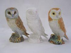 Three Beswick model owls, 1046 various colours, four Doulton Whyte & Mackay ceramic owl whisky